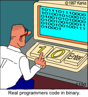 realprogrammers